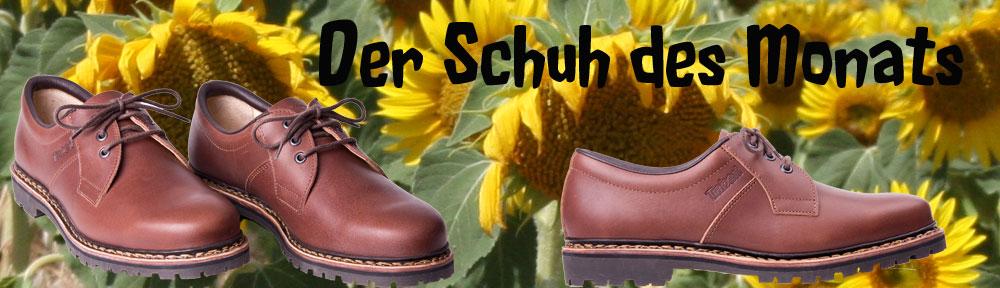 Schuh-des-Monats-August-Sonnenblume