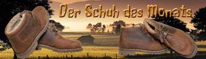 Schuh-des-Monats-November-klein