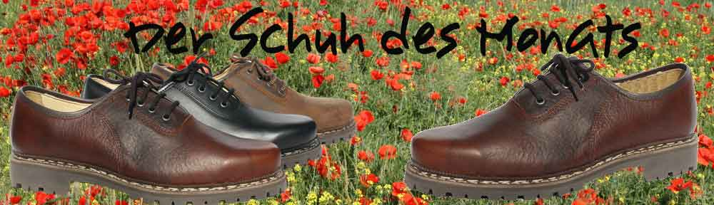 Schuh-desw-Monats--April-1-Mohn